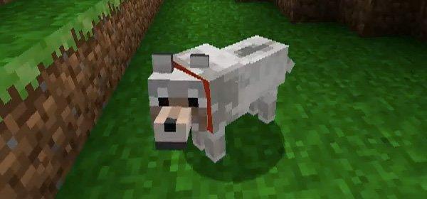 animal minecraft minecraft blog